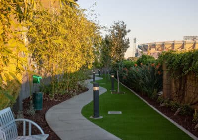 Pathways with grass and trees