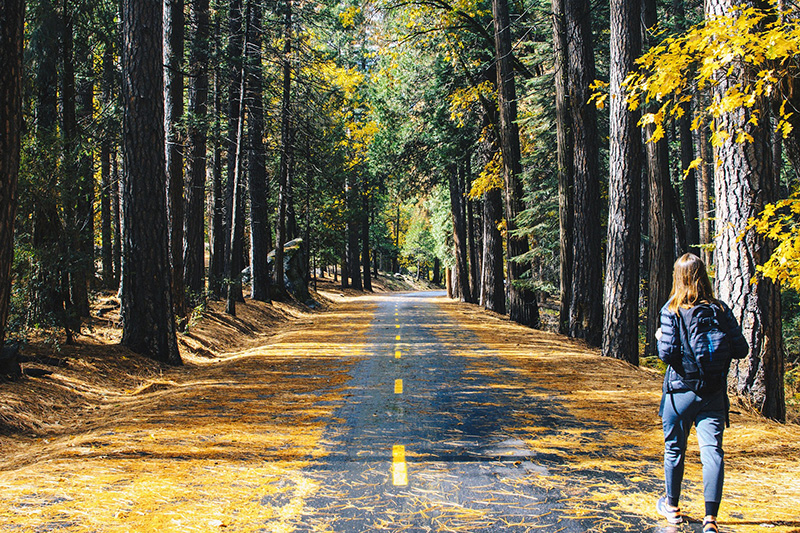 Woman walking on forest road