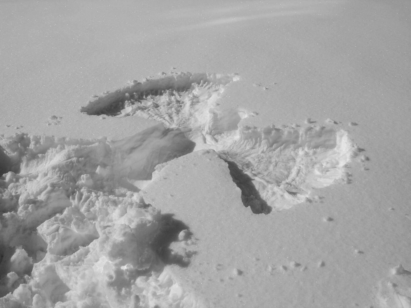 preston-memoir-angel-snow