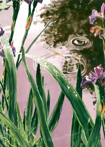 023 The Pond