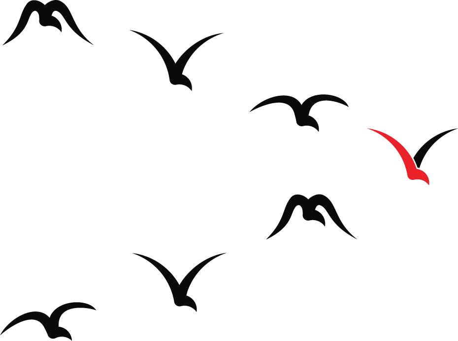 Silhouettes of fling birds in a v-formation