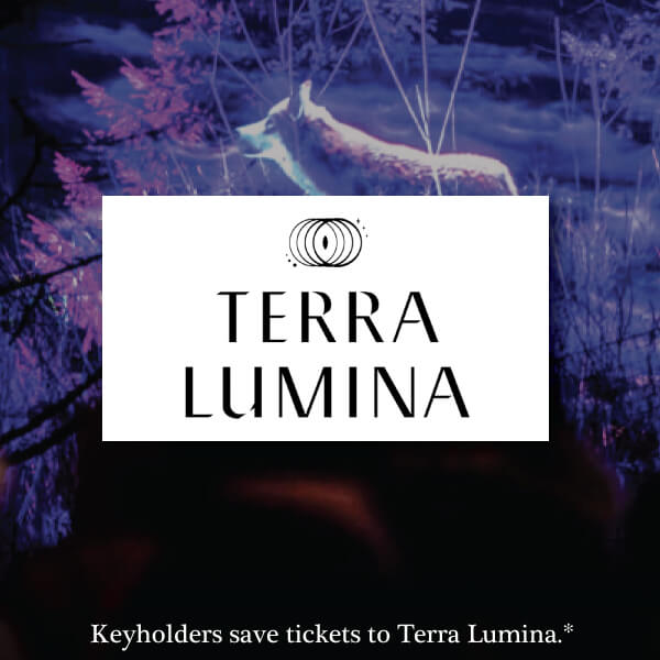Terra Lumina Toronto