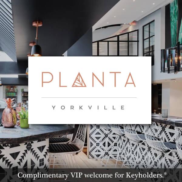 Planta Yorkville