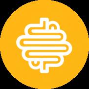 Digestive Icon