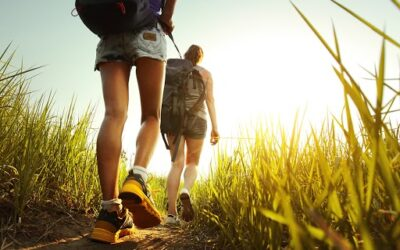 The Best Local Hiking Trails around Norwalk to Consider This Summer