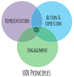 Universal Design for Learning Principles