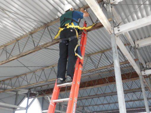 Port of Kingston Structure Assessment