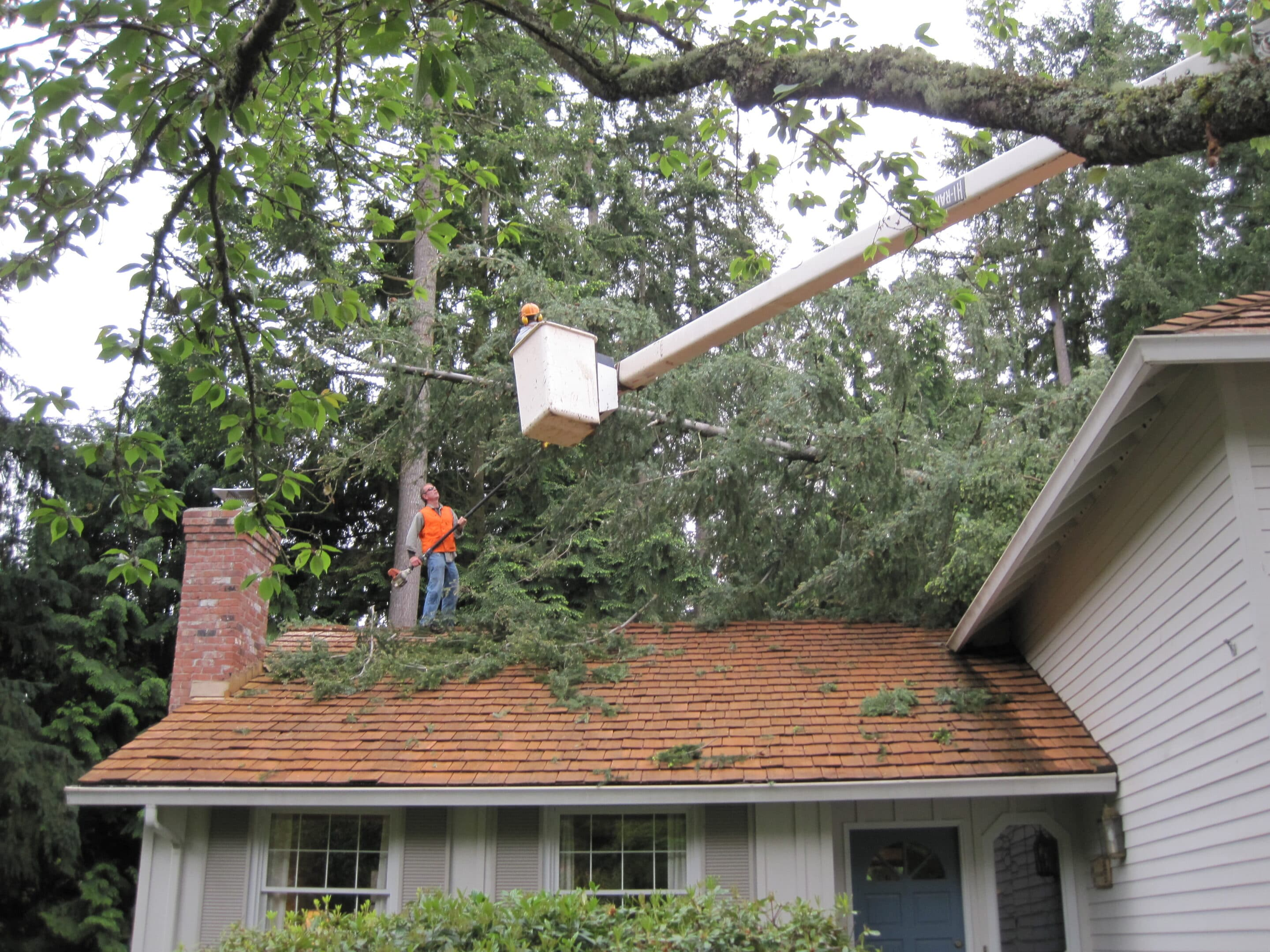 structural engineering to repair roof