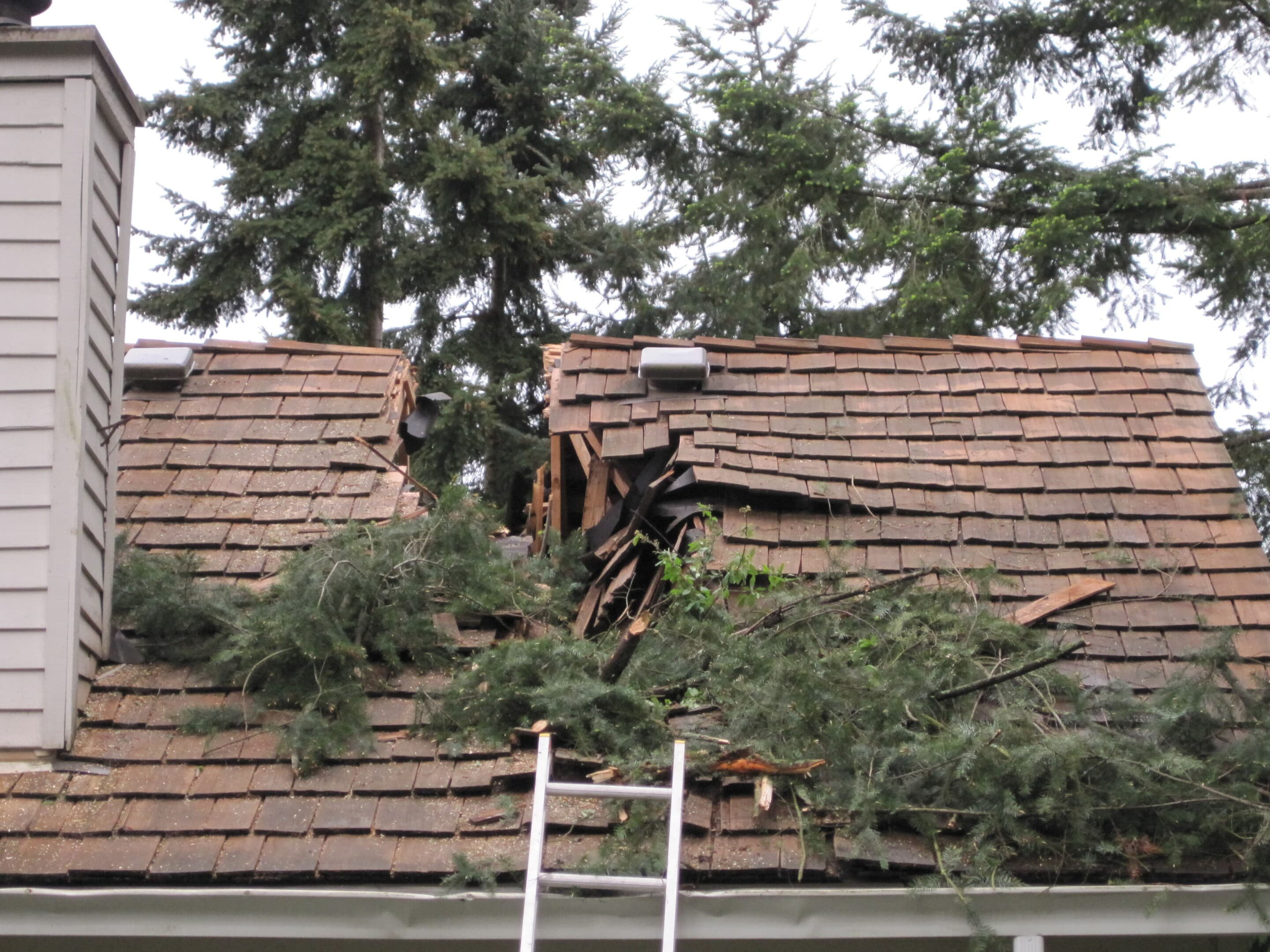 structural engineering for repairs to house