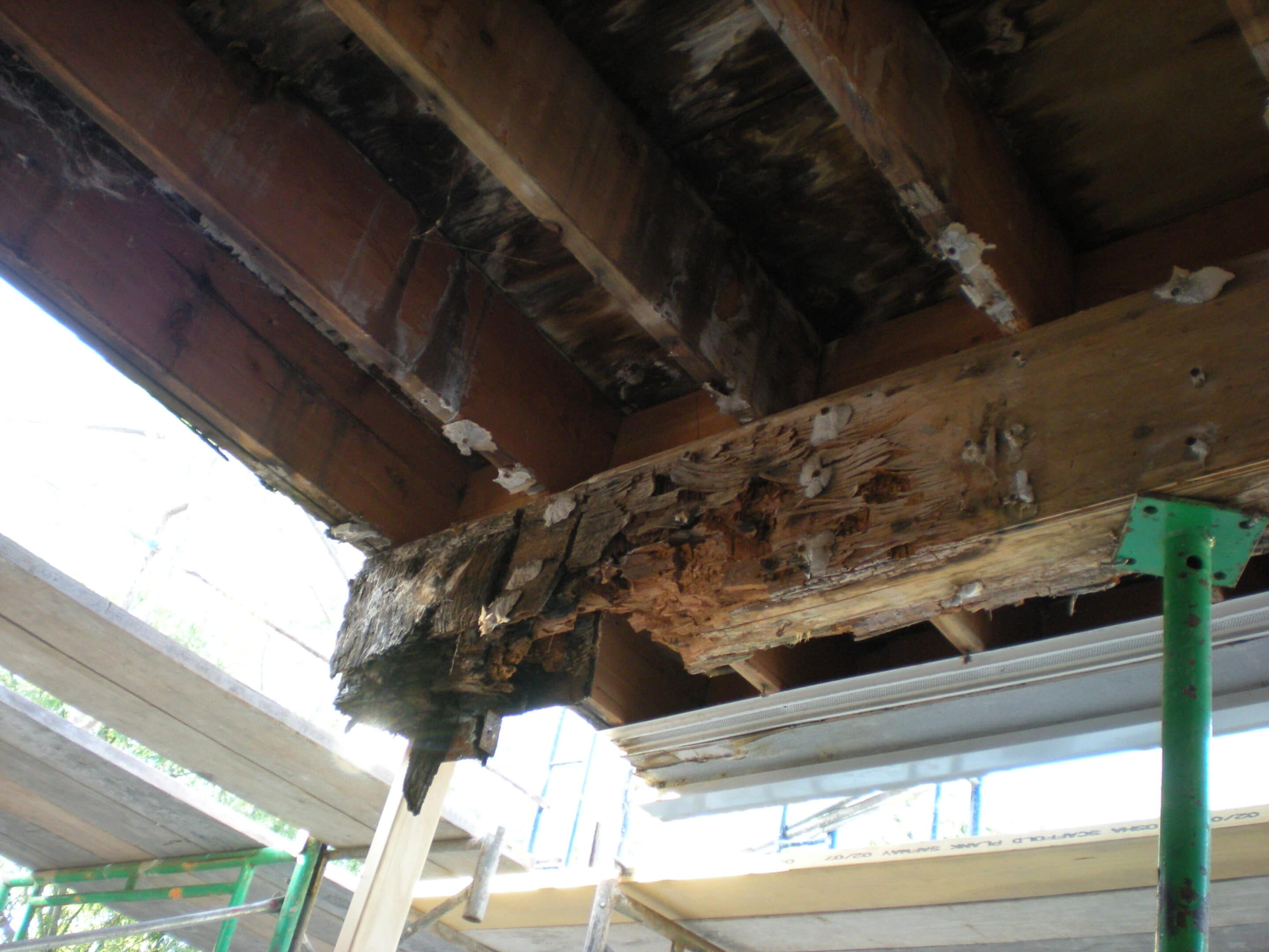 dry rotted beam