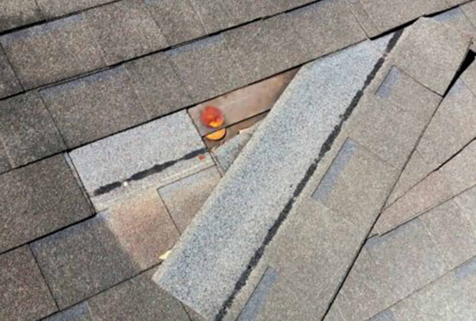 roof-roof-repair-roofer-roofing-