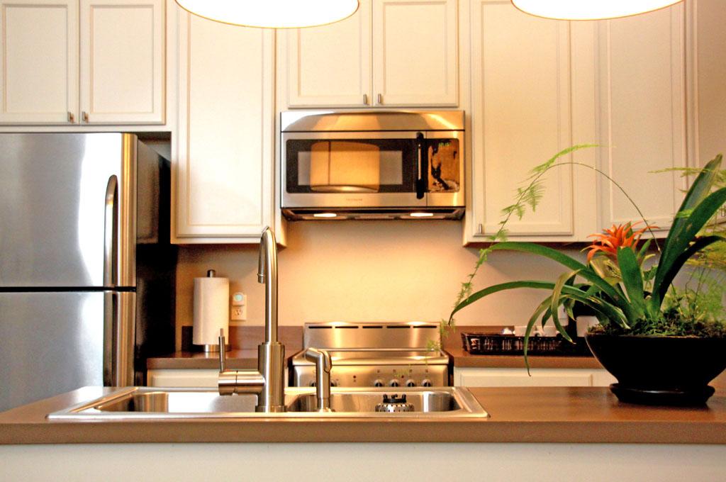 Deluxe Queen Kitchen 2