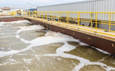 Solids and FOG Reduction in a Mechanical Wastewater Plant and Collection System