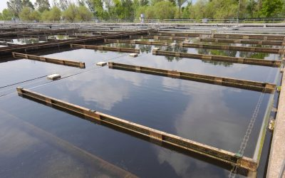 Solids Treatment in a Wastewater Lagoon System