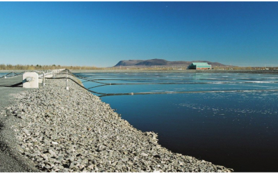 Toxicity Treatment in an Oil Refinery Aerated Lagoon System