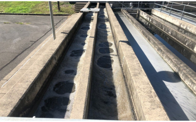F:M Treatment in an Activated Sludge Plant