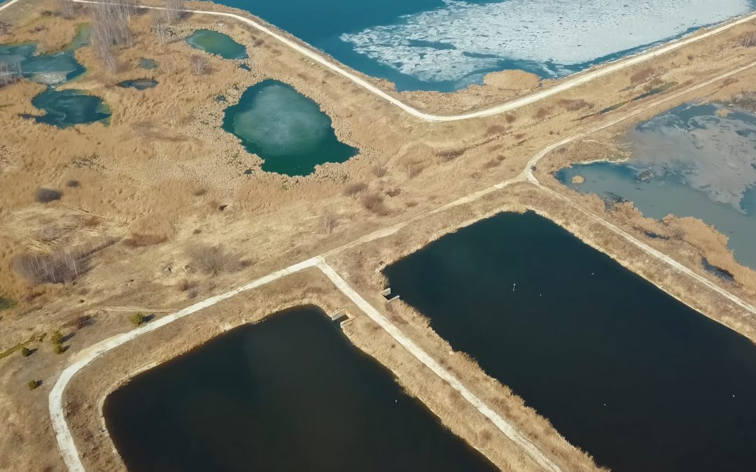 Nitrification Treatment in an Aerated Lagoon System