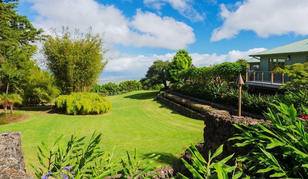 Homeowner Lawn Testimonial