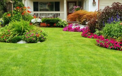 Landscape and Lawn Testimonial