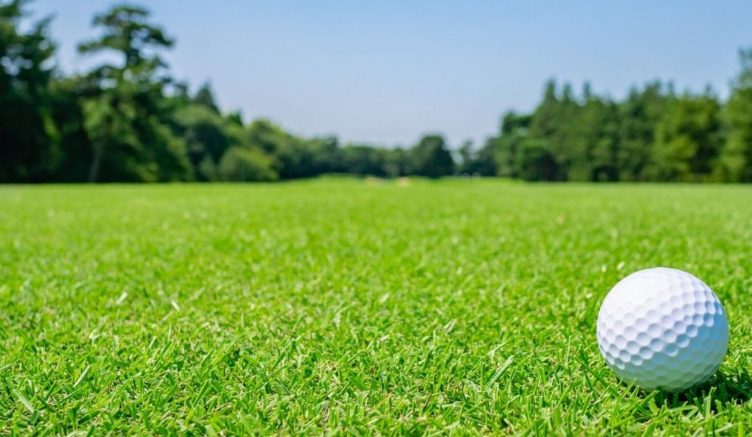 Golf Course Turf Bioaugmentation