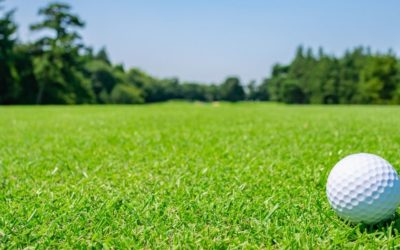 Golf Course Turf Bioaugmentation
