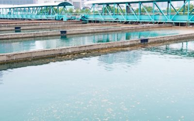 4 Ways to Balance Food to Microorganism Ratio (F:M) in Wastewater Treatment