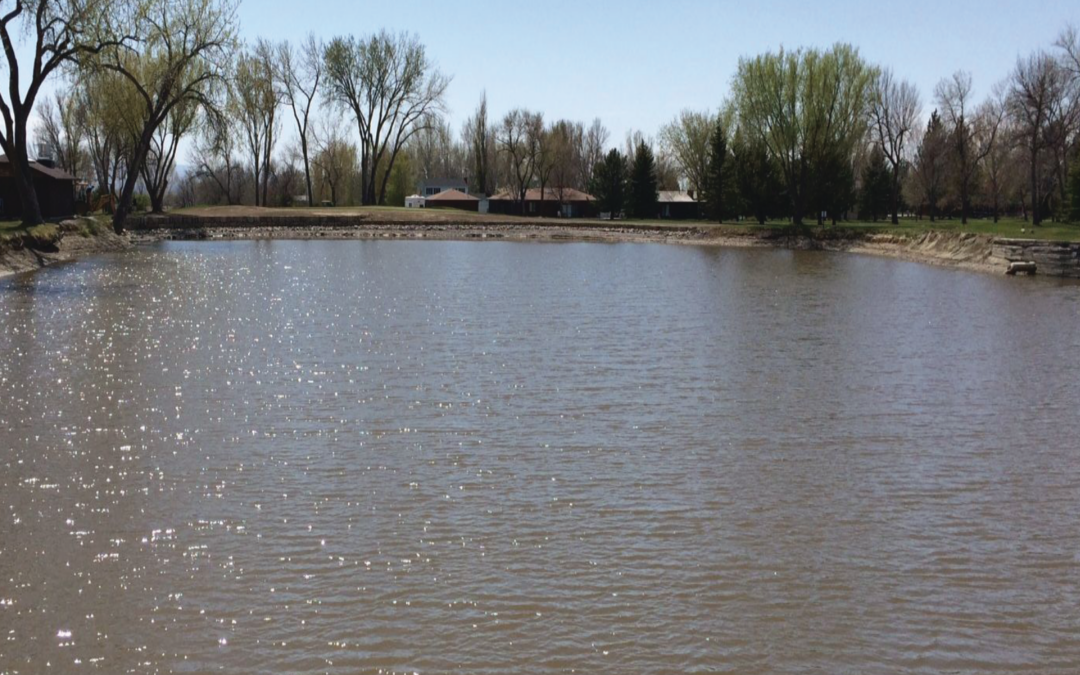 Water Clarity Treatment in Irrigation Ponds