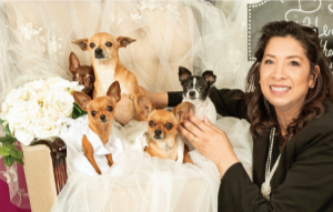 south texas event professional step wedding academy education for wedding planning