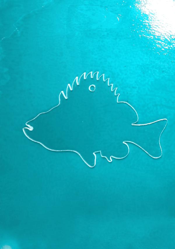 Codfish-1.png