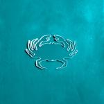 TinyCrab-1.png