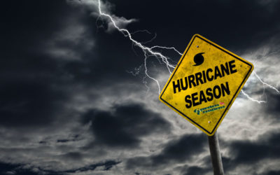 Preparing Your Yard for our South Florida Hurricane Season