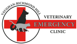 ALL-INCLUSIVE EMERGENCY SURGERY - Vaughan and Richmond Hill