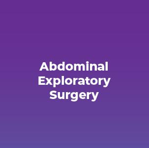 Abdominal Exploratory Surgery