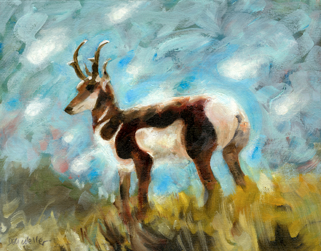 Montgomery-Lee Fine Art   Antelope 1