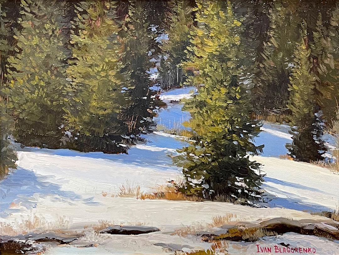 Montgomery-Lee Fine Art | Evergreens