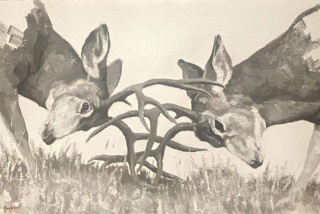 Montgomery-Lee Fine Art | Mule Deer Study
