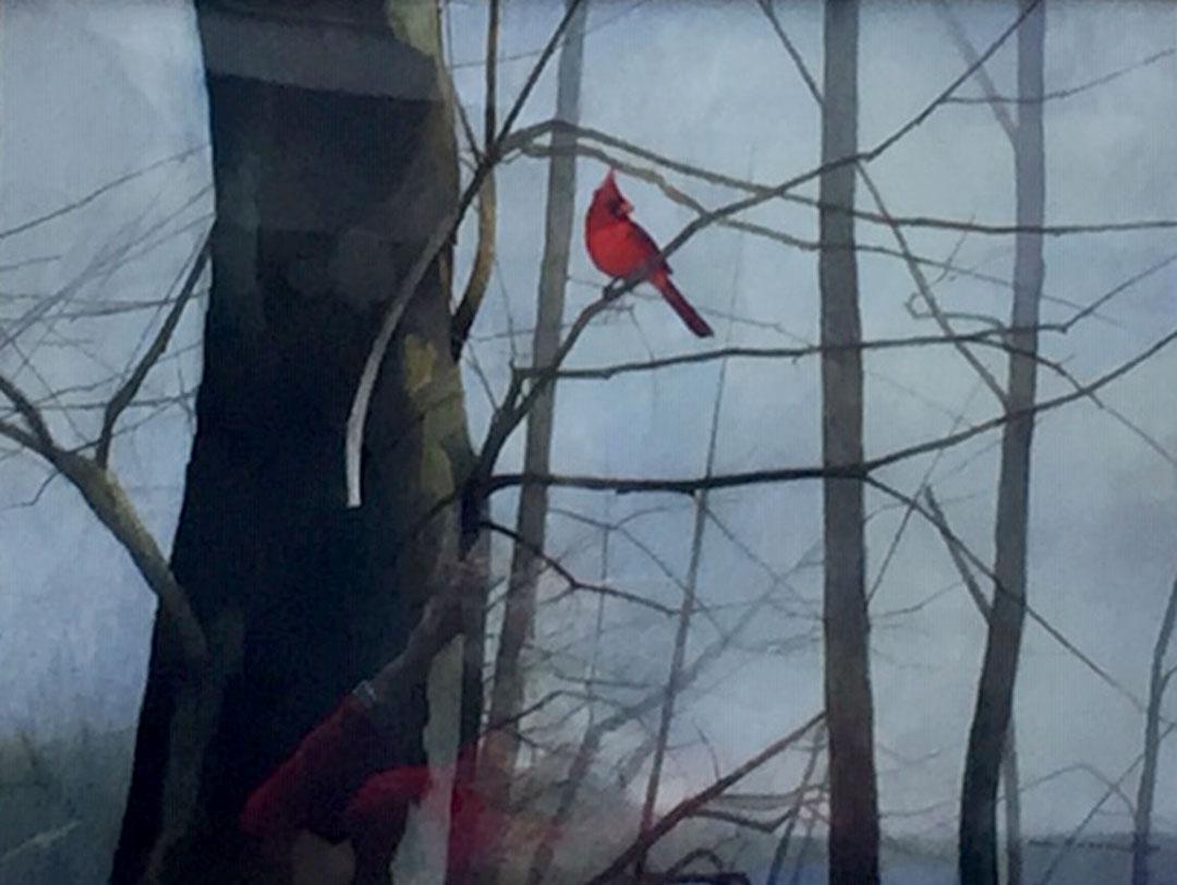 Montgomery-Lee Fine Art   The Red Bird