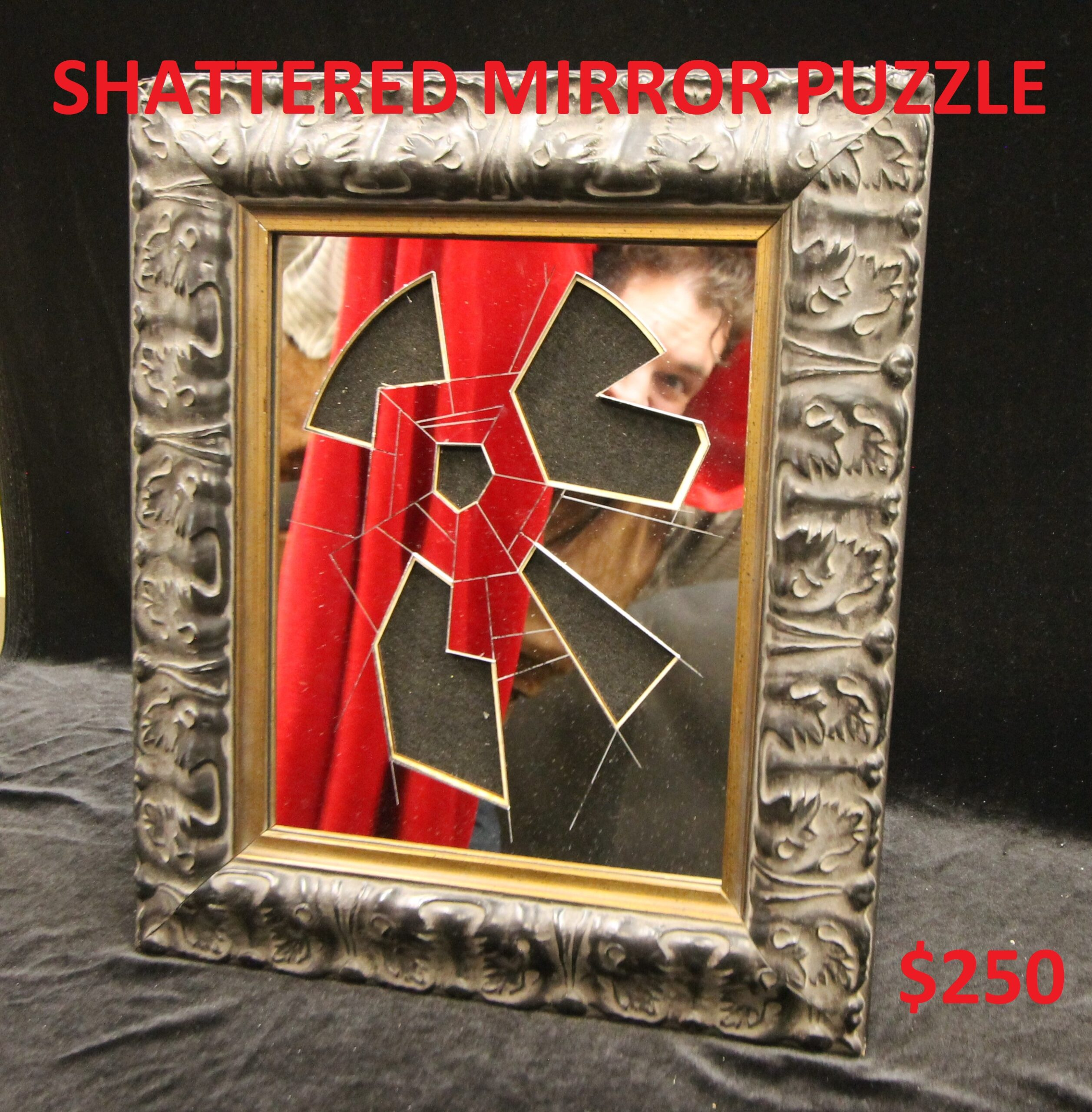 Shattered Mirror Puzzle Image