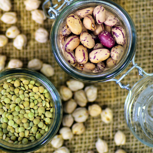Why Protein is an Essential Part of a Balanced Diet