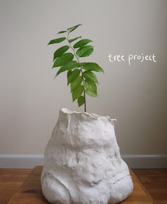 Hiroshi Sunairi: Leur Existence, Tree Project, NY