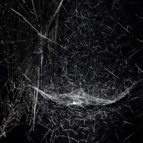 Spiderwebs in Chelsea, Tomás Saraceno