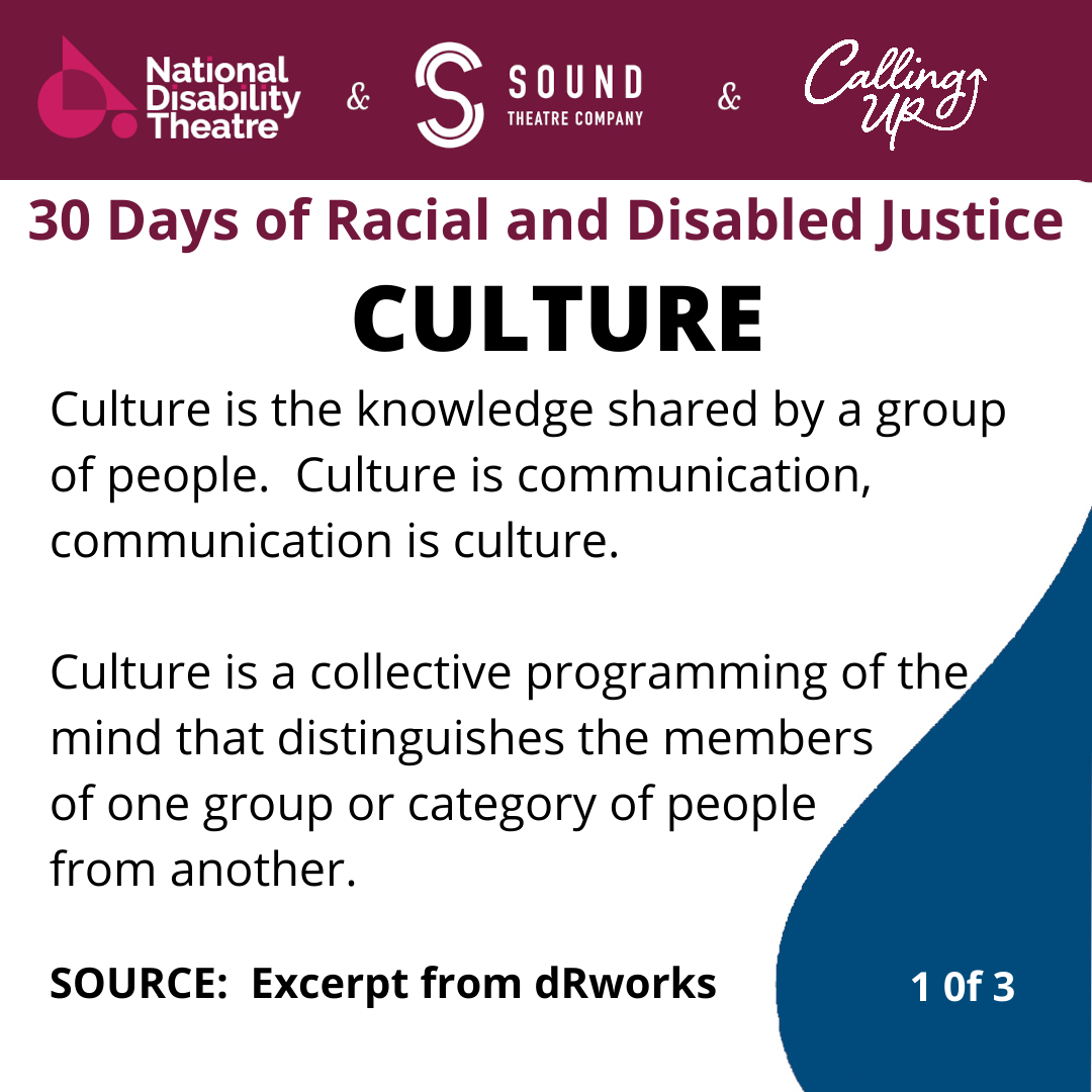 culture slide for 30 days of racial and disabled justice