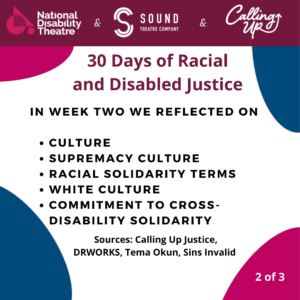 30 days of disability and racial justice week two summery card