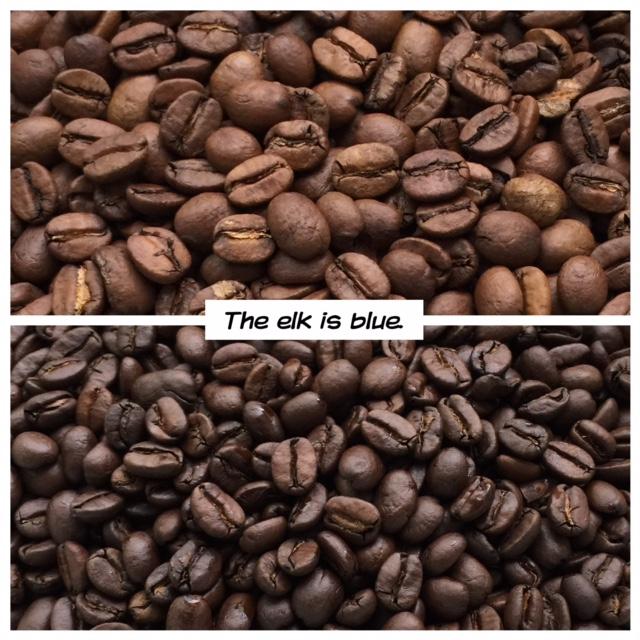 Blue Elk Coffee Company, Elkton, Virginia