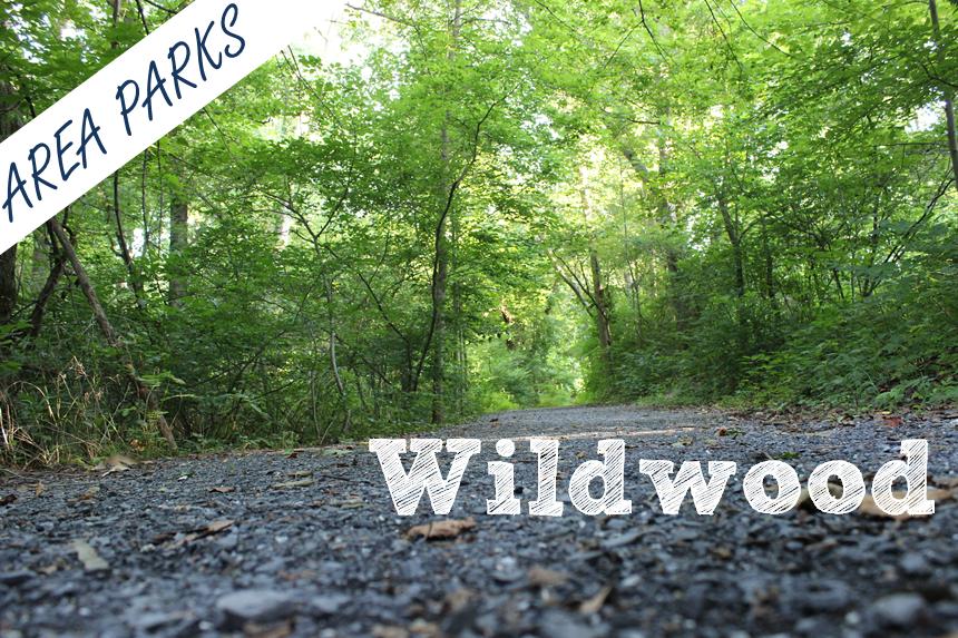 Wildwood Main 2