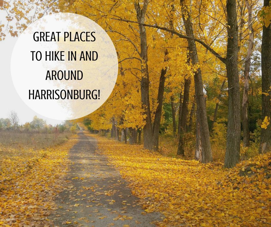 Great Places to Hike in and Around Harrisonburg! | Harrisonburg Homes Team