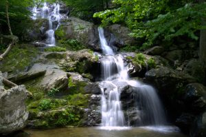 Dark Hollow Falls | Harrisonburg Homes Team