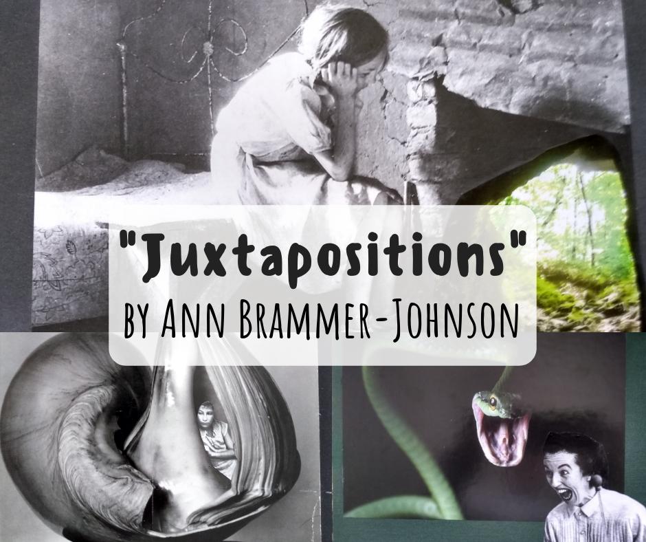 Ann Brammer Johnson   Wilson Downtown Gallery