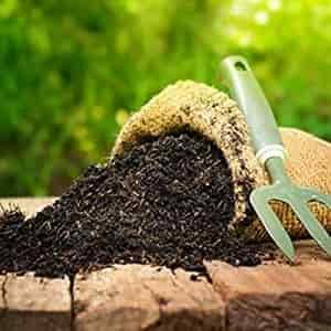 manure and fertilizer