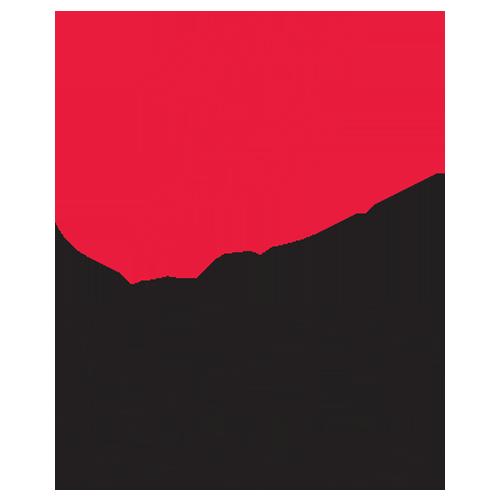 Elite Parking